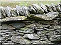 NN9734 : Dry Stane Dyke by Anne Burgess
