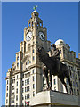 SJ3390 : Edward VII and the Royal Liver Building by Stephen McKay