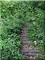 SJ9050 : Disused railway track bed near Milton, Stoke-on-Trent by Roger  Kidd