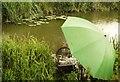 TQ1917 : Fishing on the River Adur, Bines Bridge by Josie Campbell