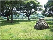 SK2850 : Cairn near Tinkerley Farm by Jonathan Clitheroe