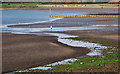 J5282 : Ballyholme Beach, Bangor by Rossographer