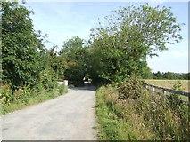 T0417 : Country lane by John M