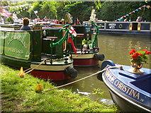 SU9948 : Narrowboat Gathering by Colin Smith