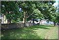 NU2229 : Churchyard Wall, Beadnell by N Chadwick