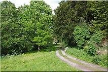 SO3958 : Public footpath by River Arrow, Pembridge by P L Chadwick