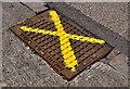 J1661 : Peter Savage drain cover, Moira by Albert Bridge