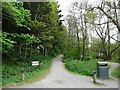 NY4624 : Public bridleway, Pooley Bridge by Rose and Trev Clough