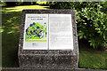 TQ1876 : Plaque re Japanese Garden, Kew Gardens by Christine Matthews