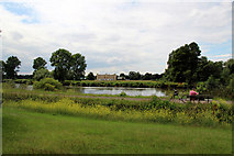 TQ1776 : Syon House and River Thames, London by Christine Matthews