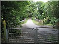 SP2069 : Bridleway approaches Rowington from the south by Robin Stott