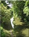 SP2069 : Grand Union Canal northwest of bridge 62 by Robin Stott