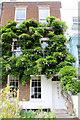 TQ1877 : Wisteria, Kew Green by Christine Matthews