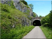 SK1272 : Rusher Cutting Tunnel - western portal by Richard Law