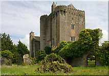R9884 : Castles of Leinster: Emmel, Offaly (1) by Mike Searle