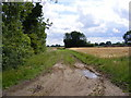 TG0525 : Bridleway off Peddlars Turnpike by Adrian Cable