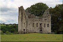 N9673 : Castles of Leinster: Fennor, Meath by Mike Searle