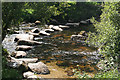 SX6773 : Dartmoor Forest: West Dart crossing by Martin Bodman