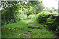 SX6673 : Dartmoor Forest: path to Huccaby by Martin Bodman