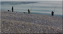 SY6873 : Three men and their rods, Chesil Beach by sue hogben