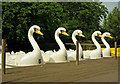 TQ2990 : Swan boats, Alexandra Park by Julian Osley