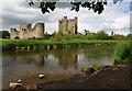 N8056 : Castles of Leinster: Trim, Meath (1) by Mike Searle