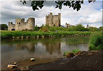 N8056 : Castles of Leinster: Trim, Meath (1) by Mike Searle