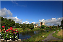 N8056 : Castles of Leinster: Trim, Meath (6) by Mike Searle