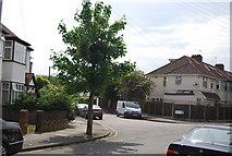 TQ2572 : Dawlish Avenue by N Chadwick