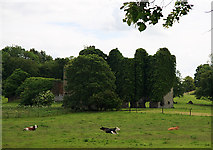 N8448 : Castles of Leinster: Summerhill, Meath by Mike Searle