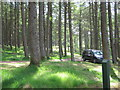NX5987 : Parking amongst the trees at Polmaddy by Ann Cook