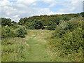 TQ3997 : Green path by Roger Jones