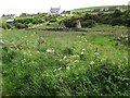 NX0940 : A ruined cottage, Port Logan by Ann Cook