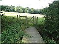 TQ4399 : Footbridge to Birch Wood by Roger Jones