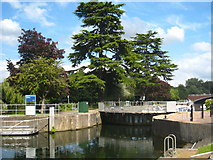 TQ0172 : The upstream entrance to Bell Weir lock by Rod Allday
