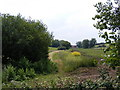 TM4563 : Footpath to Carr Avenue by Adrian Cable