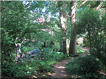 TQ6927 : Woodland path at King John's Garden by Oast House Archive