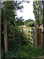 TM4465 : Footpath to Onner's Lane by Adrian Cable