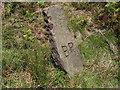 SK3068 : Strange Stone by Tony Bacon