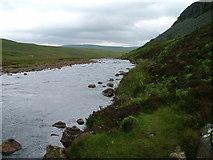 NY8328 : River Tees by David Brown