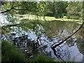 SY0384 : Squabmoor Reservoir by Derek Harper