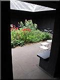 TQ2679 : Serpentine Gallery Pavilion 2011- view in through doorway by David Hawgood