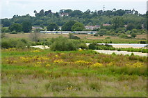 TQ0215 : Waltham Brooks Nature Reserve by Martin Horsfall