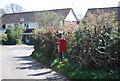 TQ8015 : Postbox, Westfield by N Chadwick