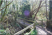 TQ8115 : Footbridge, 1066 Country Walk by N Chadwick