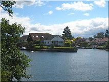 TQ1667 : Thames Ditton Island by Rod Allday