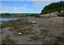 SH5571 : Low tide on the Menai Straits by Mat Fascione