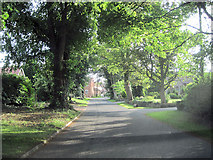TF3093 : Church Lane Utterby by John Firth