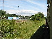 SN5981 : Vale of Rheidol railway near Aberystwyth by Gareth James