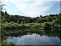 SK5434 : River Trent by Richard Croft